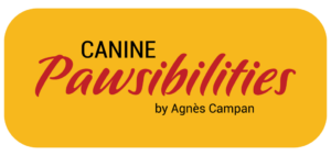CANINE Pawsibilities